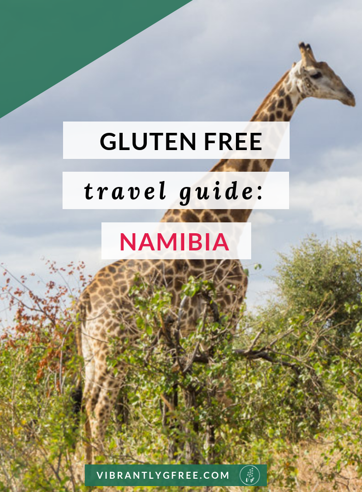 Gluten Free Namibia PIN VgF