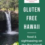 Gluten Free Hawaii - Big Island Pin 3