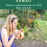 Gluten Free Hawaii - Big Island Pin 4