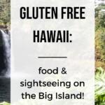 Gluten Free Hawaii - Big Island Pin 5