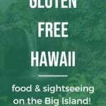 Gluten Free Hawaii - Big Island Pin 6