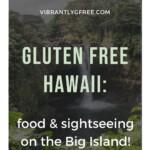 Gluten Free Hawaii - Big Island Pin 7