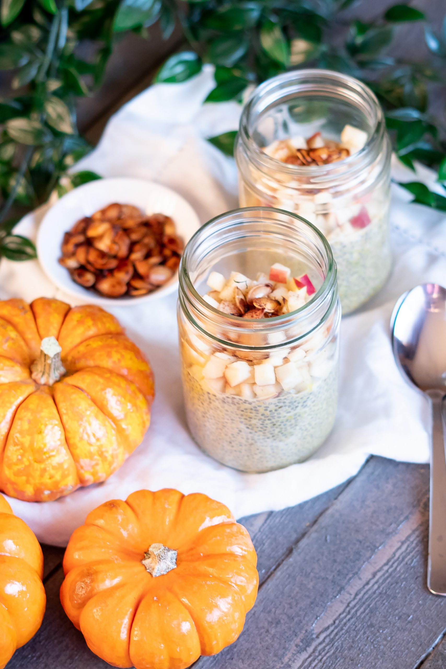 Two glass jars of Pumpkin Spice Chia Pudding set with mini pumpkins and a bowl of roasted pumpkin seeds, ready for eating!