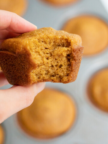 Side view of a hand holding a gluten-free pumpkin muffin with a bite removed to show the soft pillowy texture!